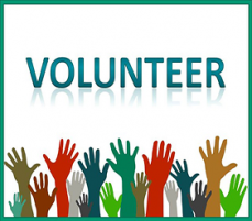 Committees and Task Forces seeking volunteers