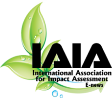 Celebrating the best in IA:  IAIA Awards