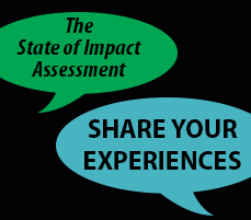 The State of Impact Assessment Survey